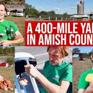 400 MILES OF THRIFTING! | SHOPPING THE LONGEST YARD SALE